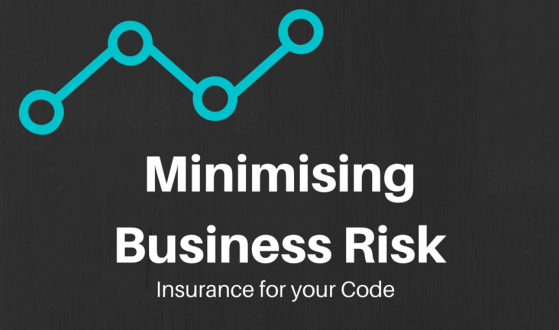 Minimising Business Risk, Insurance for your code